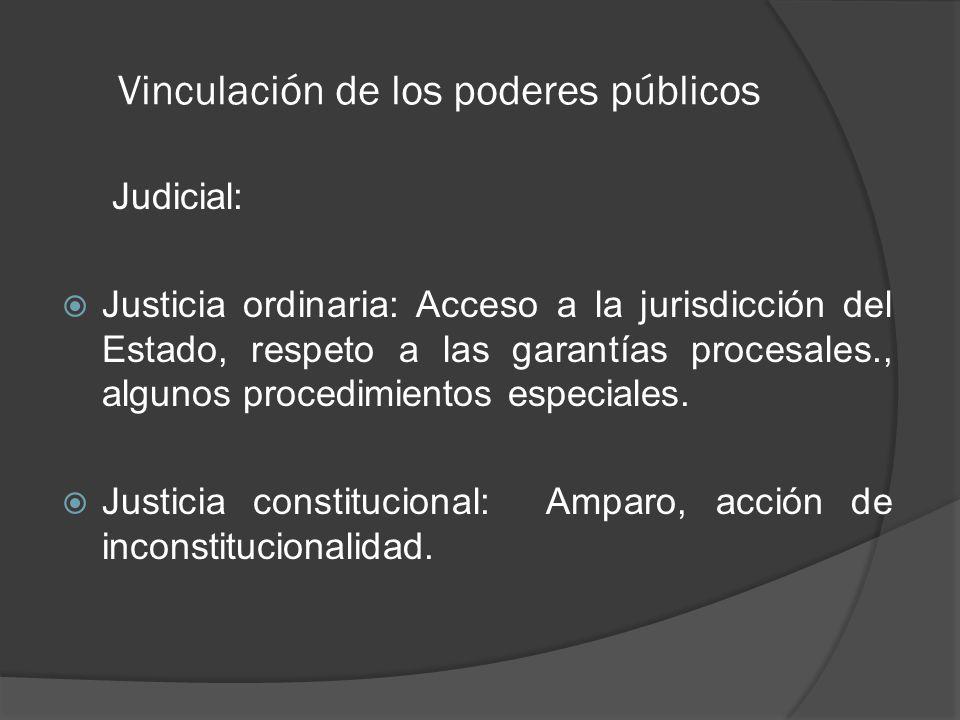 Vinculación de los poderes públicos Judicial: Justicia ordinaria: Acceso a la jurisdicción del Estado, respeto a las garantías procesales., algunos procedimientos especiales.