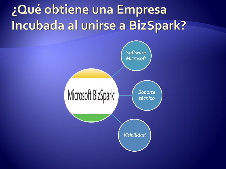 Software Microsoft Soporte técnico Visibilidad