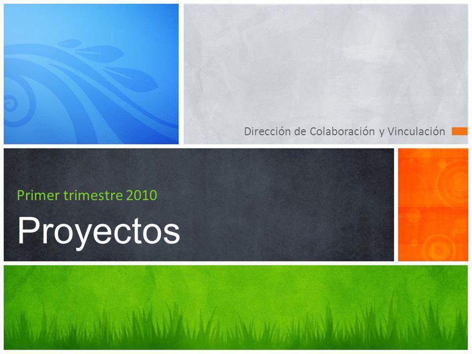 Primer trimestre 2010 Proyectos Dirección de Colaboración y Vinculación