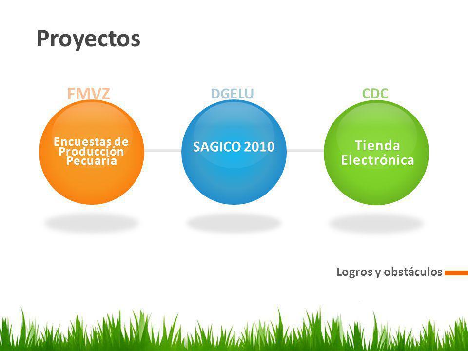 Proyectos Logros y obstáculos FMVZ Encuestas de Producción Pecuaria DGELU SAGICO 2010 CDC Tienda Electrónica