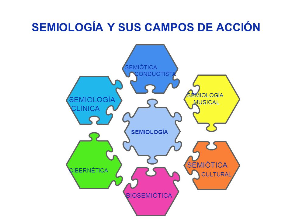 SEMIOLOGÍA BIOSEMIÓTICA CIBERNÉTICA SEMIOLOGÍA CLÍNICA SEMIÓTICA CULTURAL SEMIÓTICA CONDUCTISTA SEMIOLOGÍA MUSICAL SEMIOLOGÍA Y SUS CAMPOS DE ACCIÓN