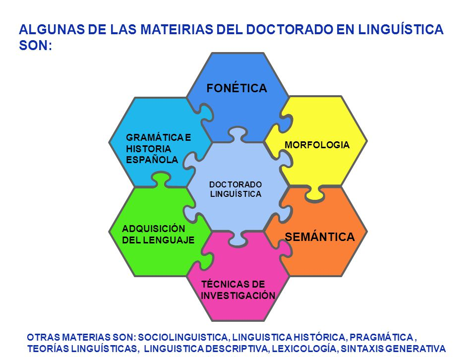 FONÉTICA GRAMÁTICA E HISTORIA ESPAÑOLA SEMÁNTICA MORFOLOGIA ADQUISICIÓN DEL LENGUAJE TÉCNICAS DE INVESTIGACIÓN DOCTORADO LINGUÍSTICA ALGUNAS DE LAS MA