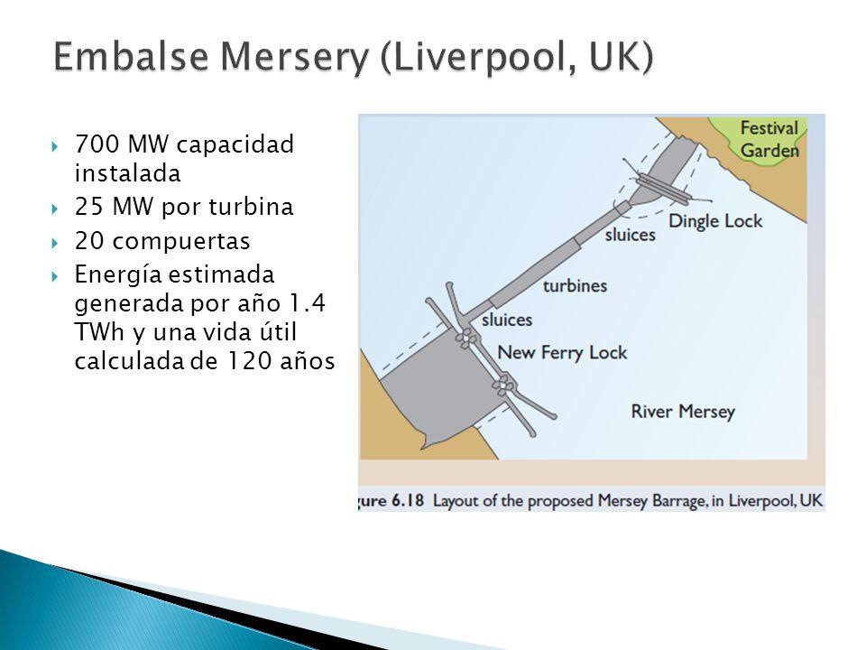 700 MW capacidad instalada 25 MW por turbina 20 compuertas Energía estimada generada por año 1.4 TWh y una vida útil calculada de 120 años