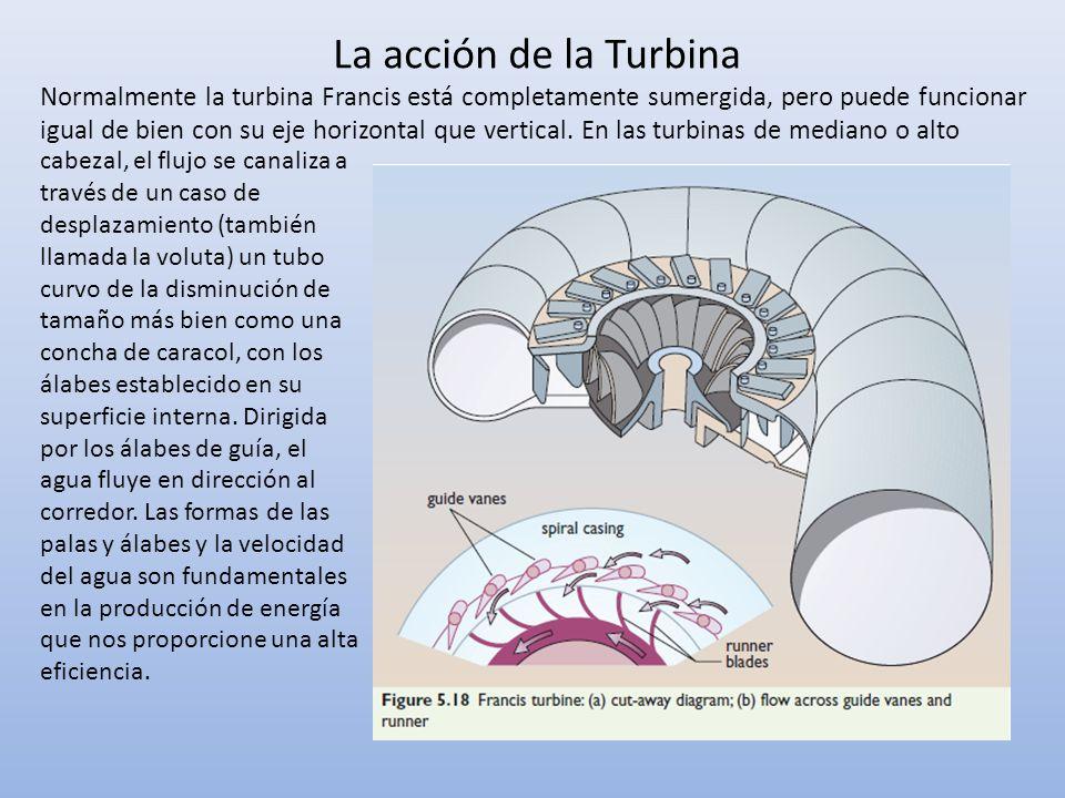 La acción de la Turbina Normalmente la turbina Francis está completamente sumergida, pero puede funcionar igual de bien con su eje horizontal que vert