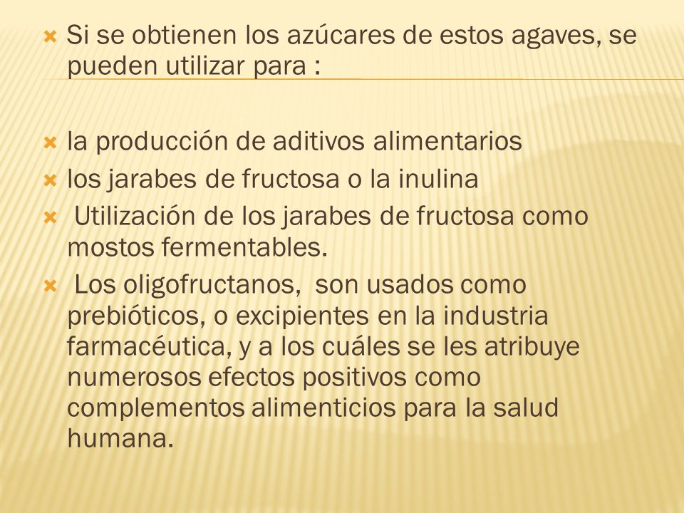 Si se obtienen los azúcares de estos agaves, se pueden utilizar para : la producción de aditivos alimentarios los jarabes de fructosa o la inulina Uti