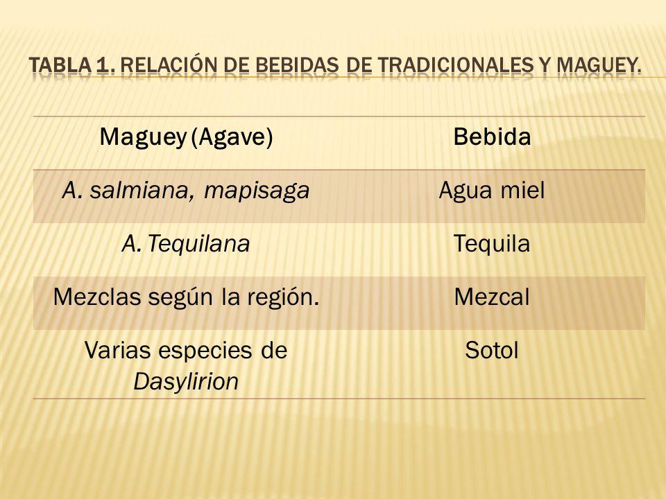 Maguey (Agave)Bebida A. salmiana, mapisagaAgua miel A.TequilanaTequila Mezclas según la región.Mezcal Varias especies de Dasylirion Sotol