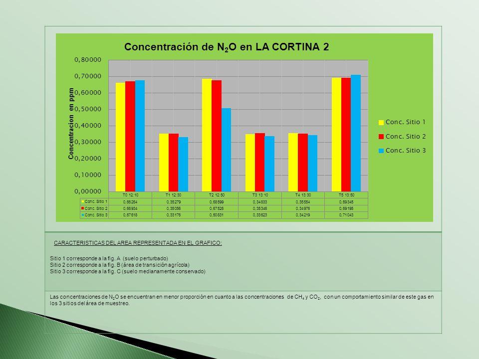 CARACTERISTICAS DEL AREA REPRESENTADA EN EL GRAFICO: Sitio 1 corresponde a la fig. A (suelo perturbado) Sitio 2 corresponde a la fig. B (área de trans