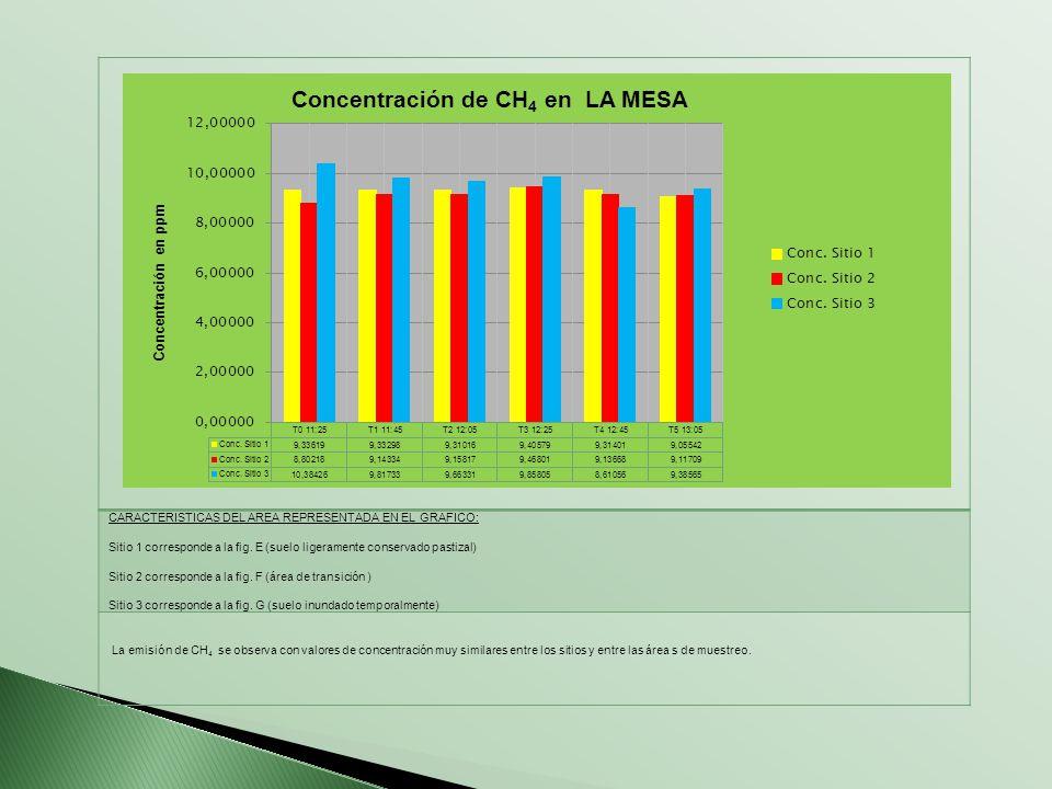 CARACTERISTICAS DEL AREA REPRESENTADA EN EL GRAFICO: Sitio 1 corresponde a la fig. E (suelo ligeramente conservado pastizal) Sitio 2 corresponde a la