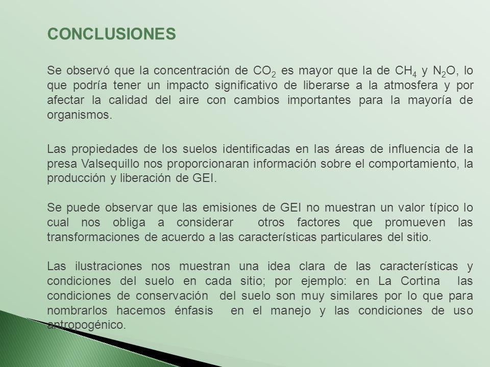 CONCLUSIONES Se observó que la concentración de CO 2 es mayor que la de CH 4 y N 2 O, lo que podría tener un impacto significativo de liberarse a la a