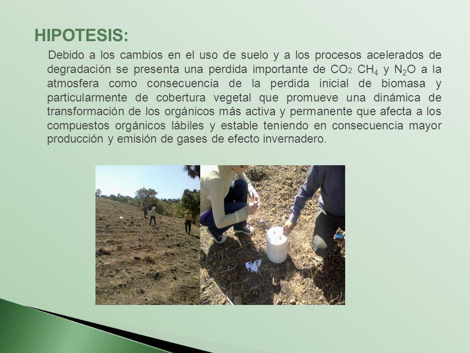 HIPOTESIS: Debido a los cambios en el uso de suelo y a los procesos acelerados de degradación se presenta una perdida importante de CO 2 CH 4 y N 2 O