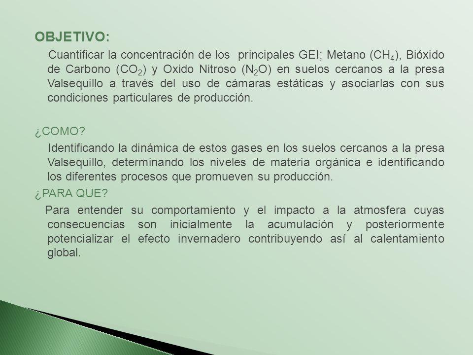OBJETIVO: Cuantificar la concentración de los principales GEI; Metano (CH 4 ), Bióxido de Carbono (CO 2 ) y Oxido Nitroso (N 2 O) en suelos cercanos a