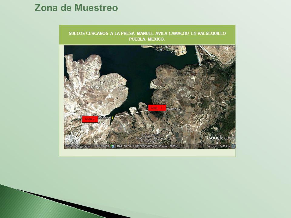 SUELOS CERCANOS A LA PRESA MANUEL AVILA CAMACHO EN VALSEQUILLO PUEBLA, MEXICO. Área 2 Zona de Muestreo Área 1