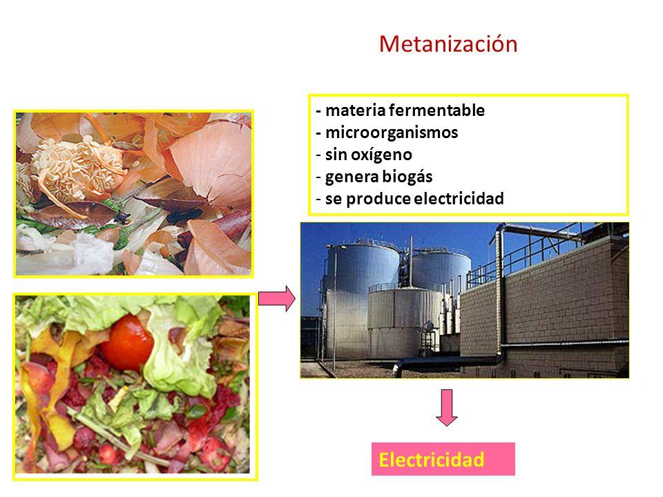 Electricidad - materia fermentable - microorganismos - sin oxígeno - genera biogás - se produce electricidad Metanización