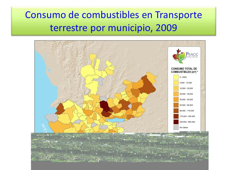Consumo de combustibles en Transporte terrestre por municipio, 2009