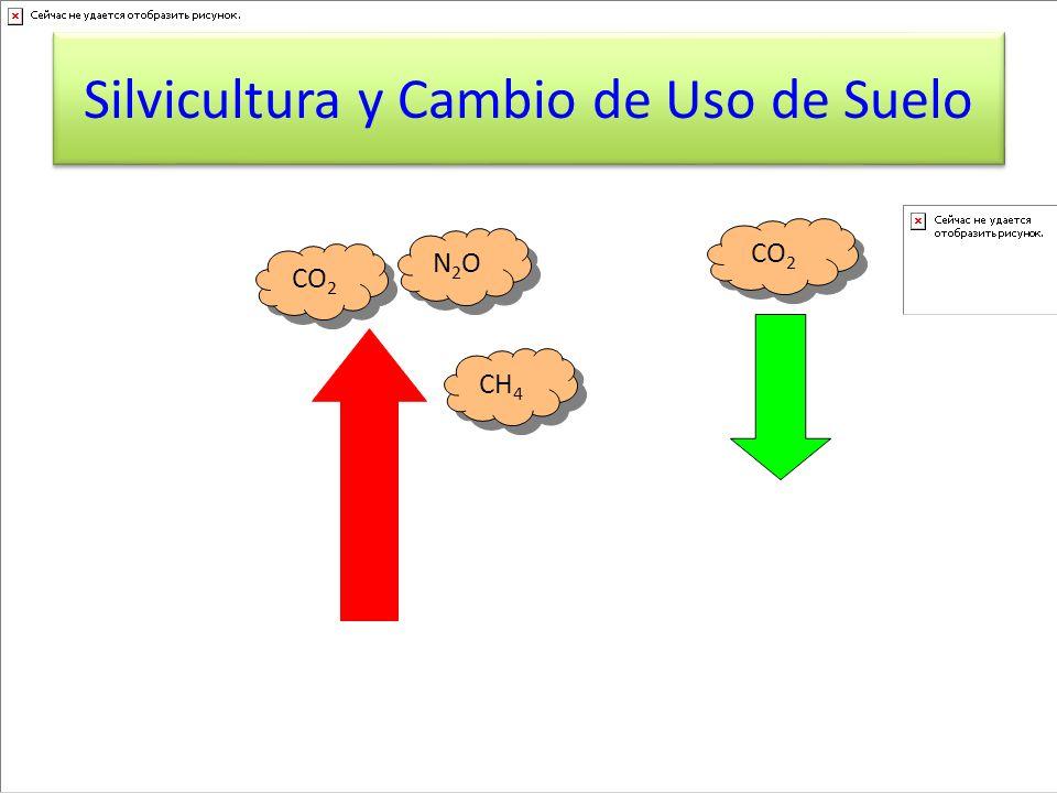 CO 2 N 2 O CH 4 Silvicultura y Cambio de Uso de Suelo