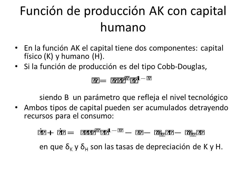 Función de producción AK con capital humano En la función AK el capital tiene dos componentes: capital físico (K) y humano (H). Si la función de produ