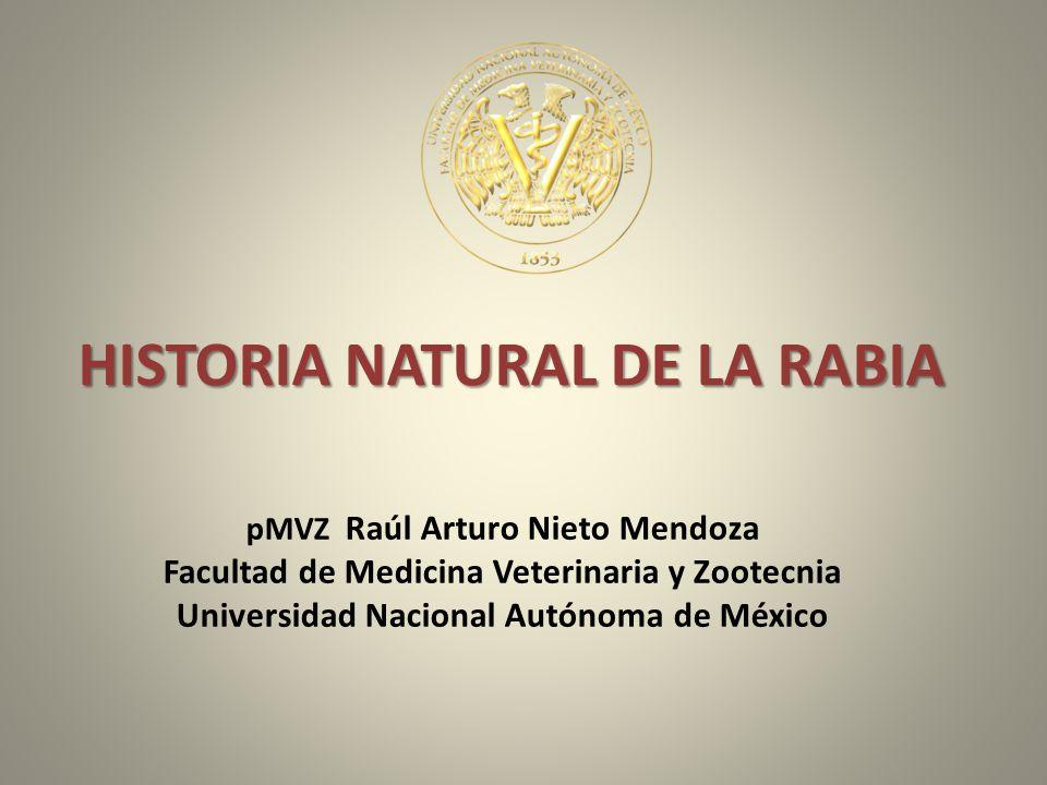 HISTORIA NATURAL DE LA RABIA pMVZ Raúl Arturo Nieto Mendoza Facultad de Medicina Veterinaria y Zootecnia Universidad Nacional Autónoma de México