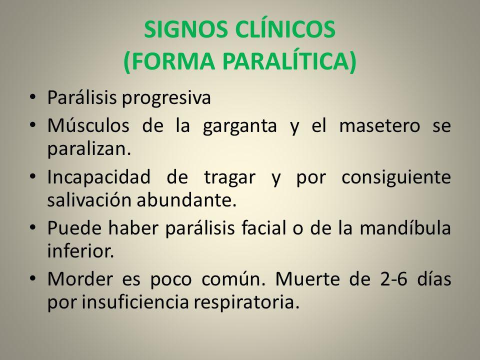 SIGNOS CLÍNICOS (FORMA PARALÍTICA) Parálisis progresiva Músculos de la garganta y el masetero se paralizan. Incapacidad de tragar y por consiguiente s