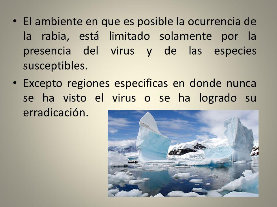 El ambiente en que es posible la ocurrencia de la rabia, está limitado solamente por la presencia del virus y de las especies susceptibles. Excepto re