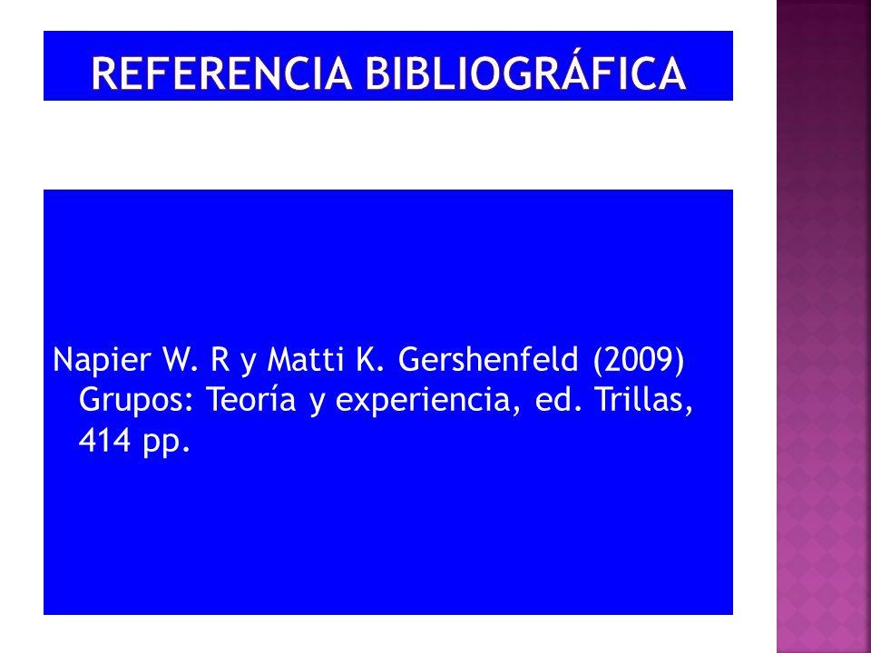 Napier W. R y Matti K. Gershenfeld (2009) Grupos: Teoría y experiencia, ed. Trillas, 414 pp.