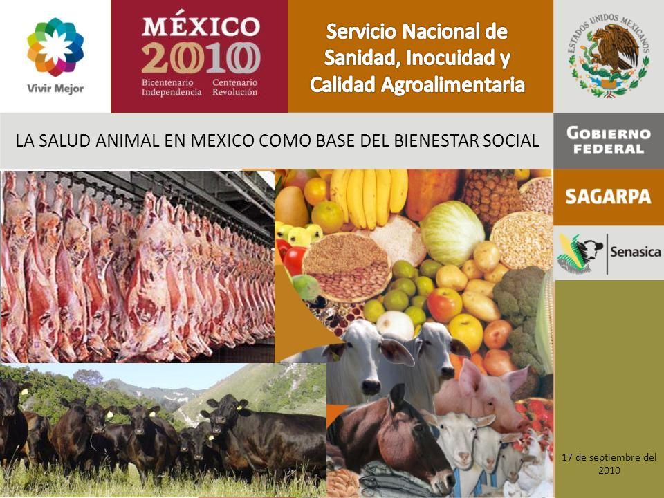 LA SALUD ANIMAL EN MEXICO COMO BASE DEL BIENESTAR SOCIAL 17 de septiembre del 2010