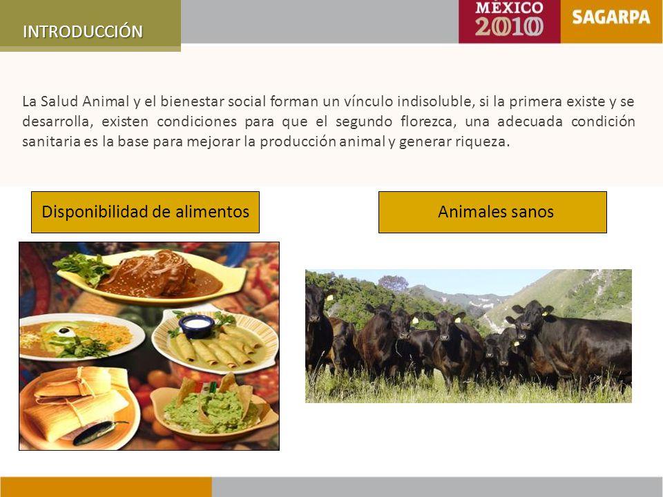 Distribución por Subcomponentes en 2010 SANIDAD VEGETAL SALUD ANIMAL SANIDAD ACUÍCOLA INOCUIDADINOCUIDAD