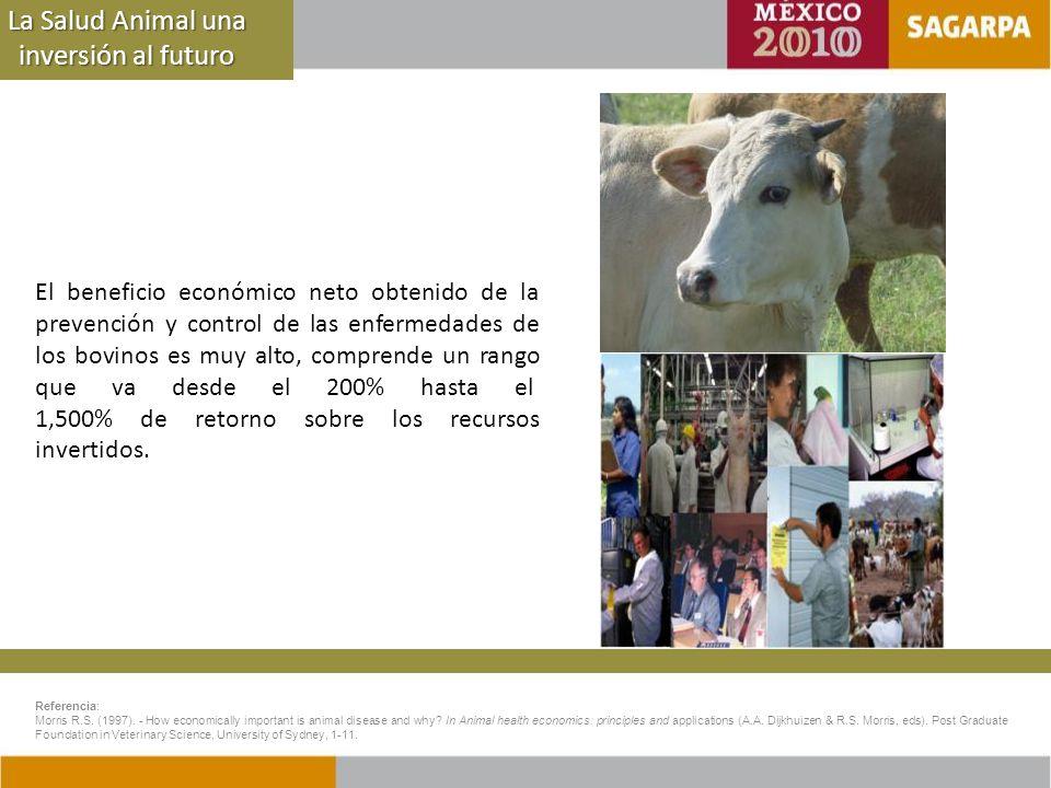 La Salud Animal una inversión al futuro El beneficio económico neto obtenido de la prevención y control de las enfermedades de los bovinos es muy alto, comprende un rango que va desde el 200% hasta el 1,500% de retorno sobre los recursos invertidos.