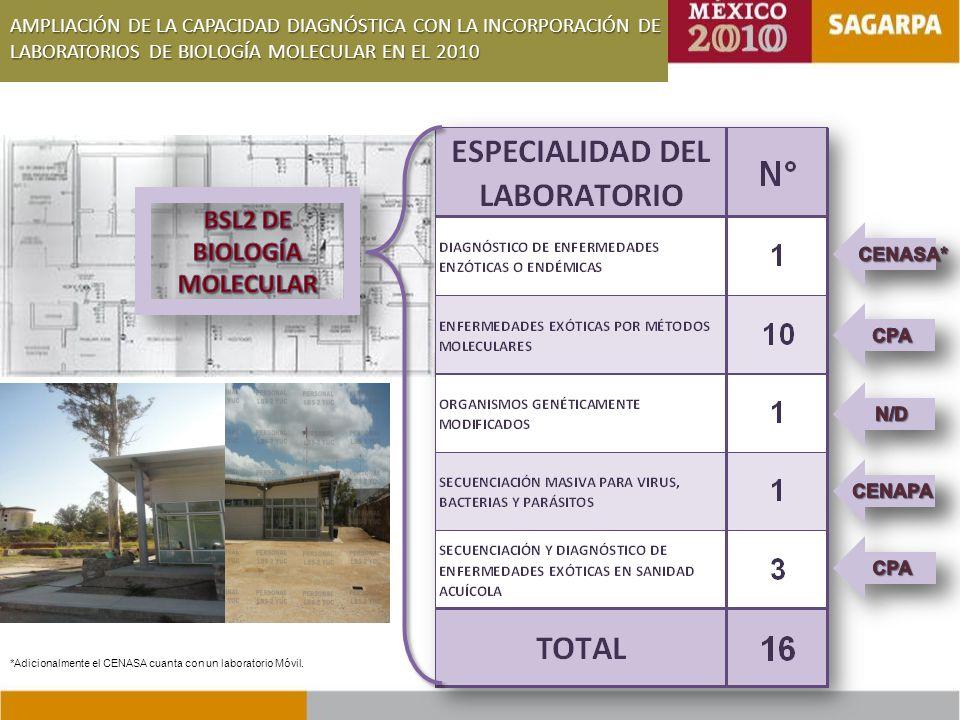 AMPLIACIÓN DE LA CAPACIDAD DIAGNÓSTICA CON LA INCORPORACIÓN DE LABORATORIOS DE BIOLOGÍA MOLECULAR EN EL 2010 *Adicionalmente el CENASA cuanta con un laboratorio Móvil.