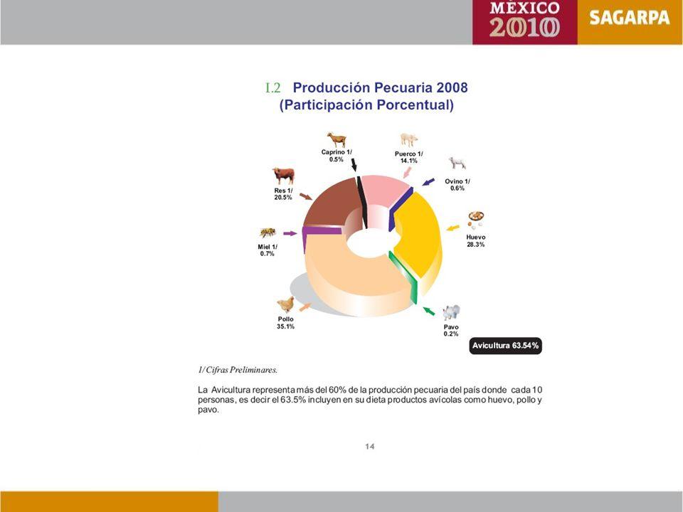 Metas al 2012 - Identificación oportuna de áreas de riesgo basada en el reporte de focos rábicos y analizados en sistemas de información geográfica (GIS).