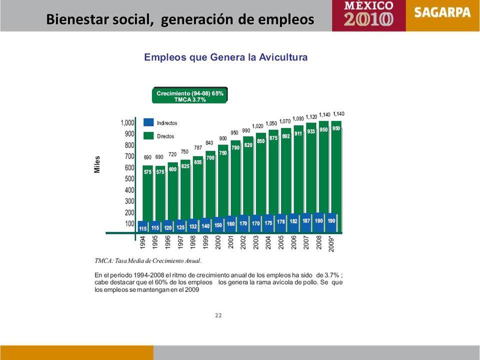 Bienestar social, generación de empleos