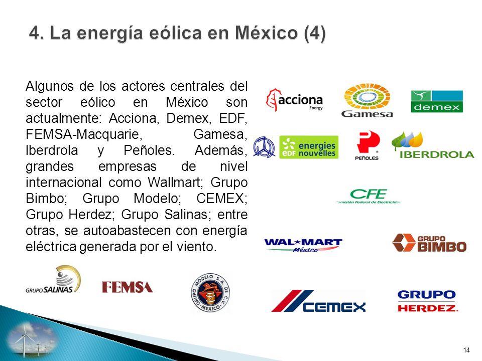 Algunos de los actores centrales del sector eólico en México son actualmente: Acciona, Demex, EDF, FEMSA-Macquarie, Gamesa, lberdrola y Peñoles.