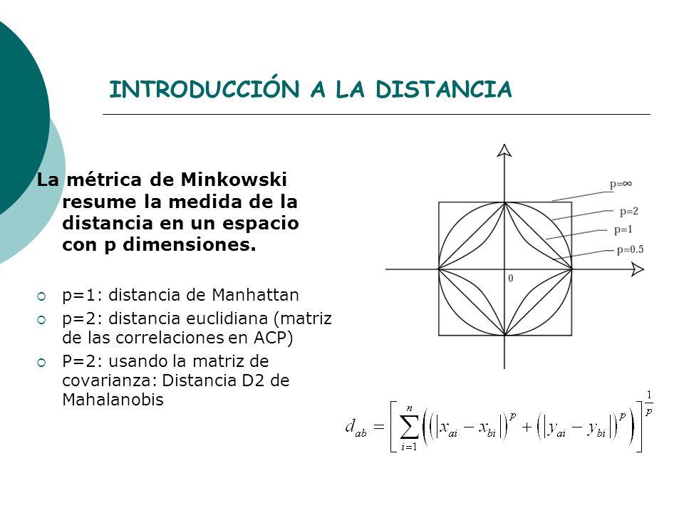 INTRODUCCIÓN A LA DISTANCIA La métrica de Minkowski resume la medida de la distancia en un espacio con p dimensiones. p=1: distancia de Manhattan p=2: