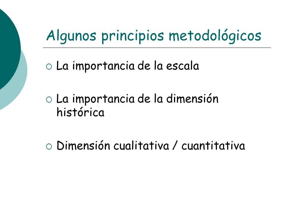 Algunos principios metodológicos La importancia de la escala La importancia de la dimensión histórica Dimensión cualitativa / cuantitativa