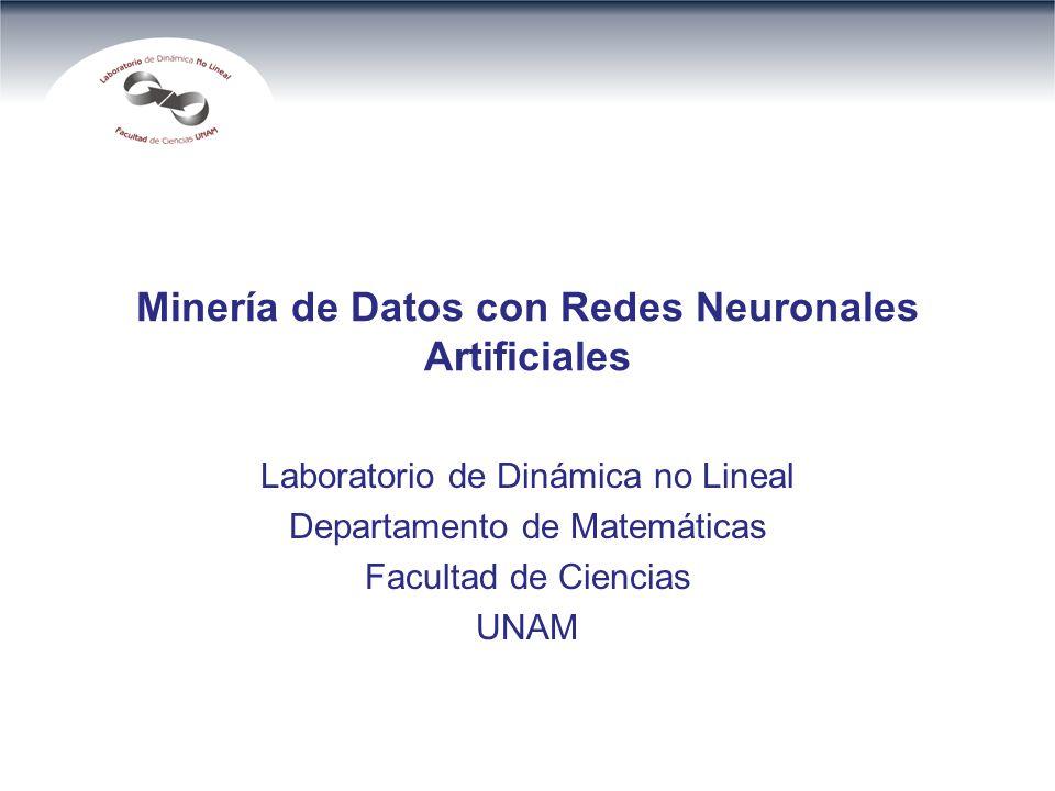 Minería de Datos con Redes Neuronales Artificiales Laboratorio de Dinámica no Lineal Departamento de Matemáticas Facultad de Ciencias UNAM