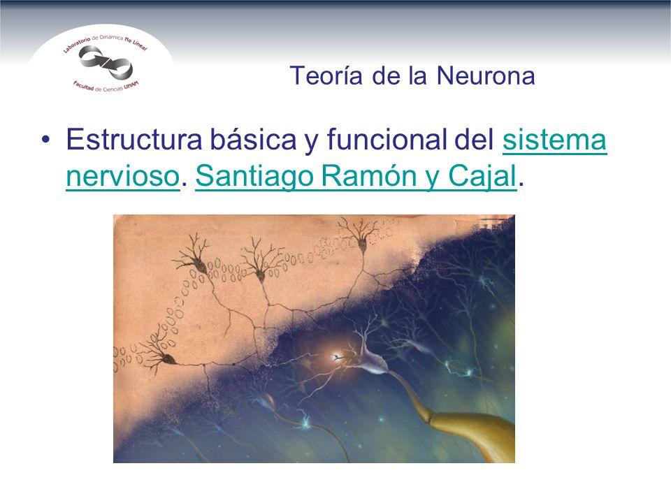 Teoría de la Neurona Estructura básica y funcional del sistema nervioso.