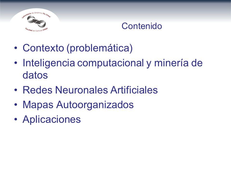 Contenido Contexto (problemática) Inteligencia computacional y minería de datos Redes Neuronales Artificiales Mapas Autoorganizados Aplicaciones