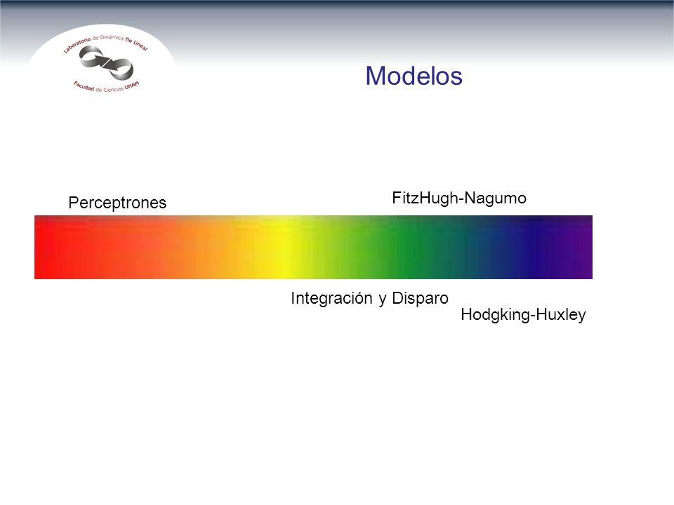 Modelos Perceptrones Hodgking-Huxley Integración y Disparo FitzHugh-Nagumo