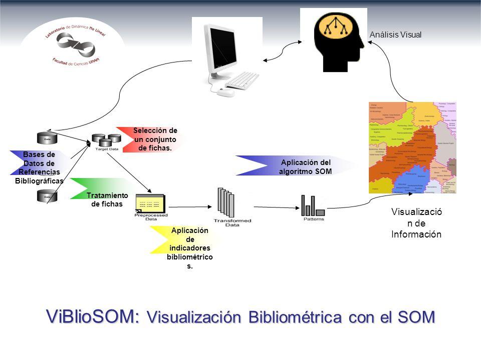 Tratamiento de fichas Aplicación de indicadores bibliométrico s.