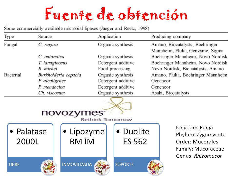 Fuente de obtención Kingdom: Fungi Phylum: Zygomycota Order: Mucorales Family: Mucoraceae Genus: Rhizomucor Palatase 2000L LIBRE Lipozyme RM IM INMOVILIZADA Duolite ES 562 SOPORTE