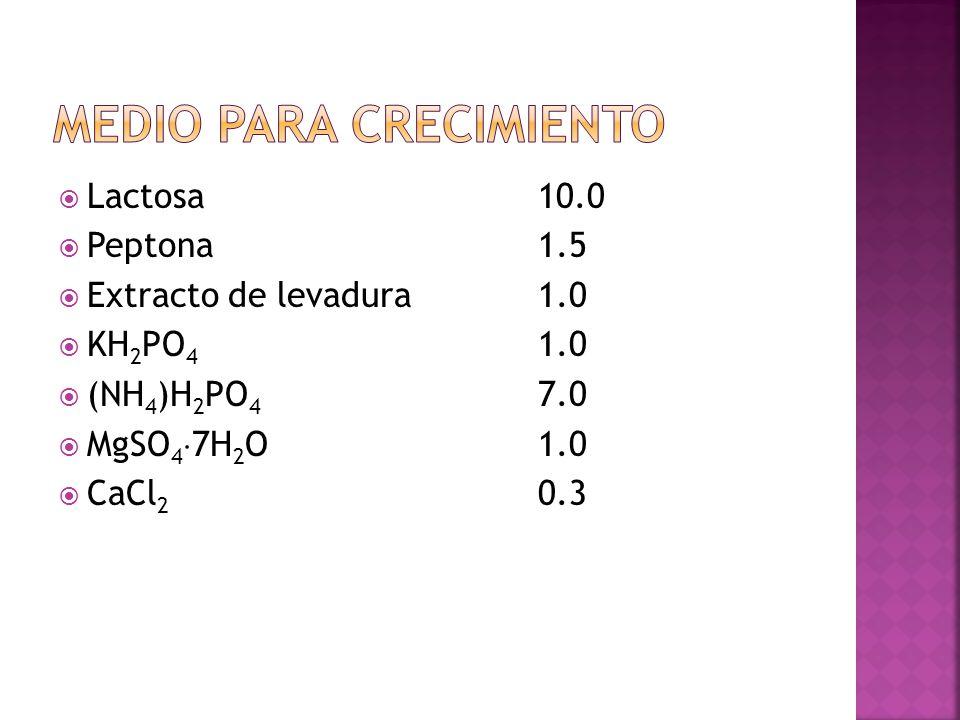 Lactosa 10.0 Peptona 1.5 Extracto de levadura 1.0 KH 2 PO 4 1.0 (NH 4 )H 2 PO 4 7.0 MgSO 4 7H 2 O 1.0 CaCl 2 0.3