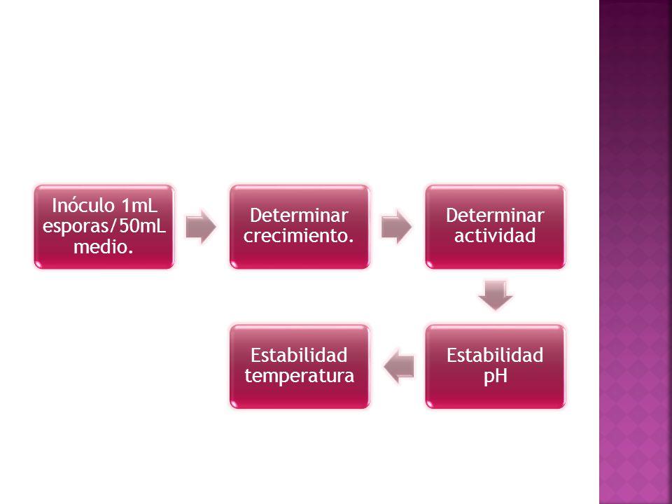 Inóculo 1mL esporas/50mL medio. Determinar crecimiento. Determinar actividad Estabilidad pH Estabilidad temperatura