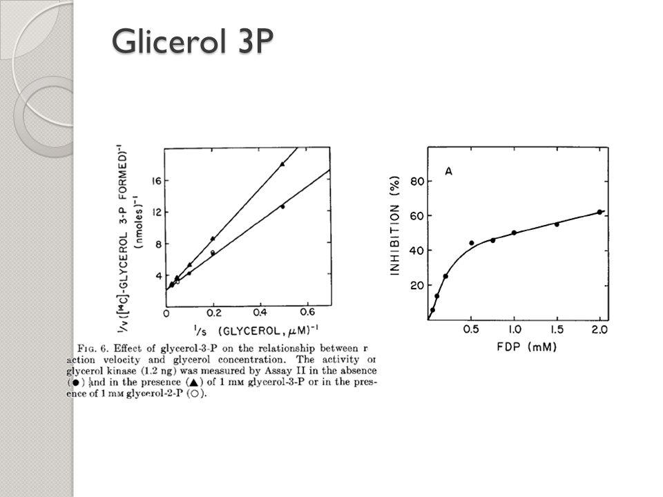 Glicerol 3P