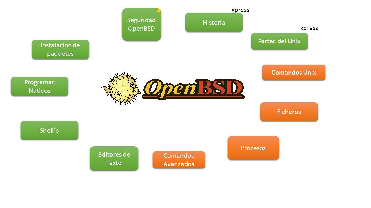Historia Partes del Unix Comandos Unix Ficheros Procesos Comandos Avanzados Editores de Texto Shell´s Seguridad OpenBSD xpress Instalacion de paquetes