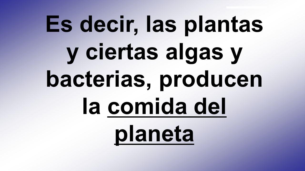 Fotosíntesis Es el proceso mediante el cual las plantas capturan la energía solar y la convierten en carbohidratos Luz + Agua + bióxido de carbono Car