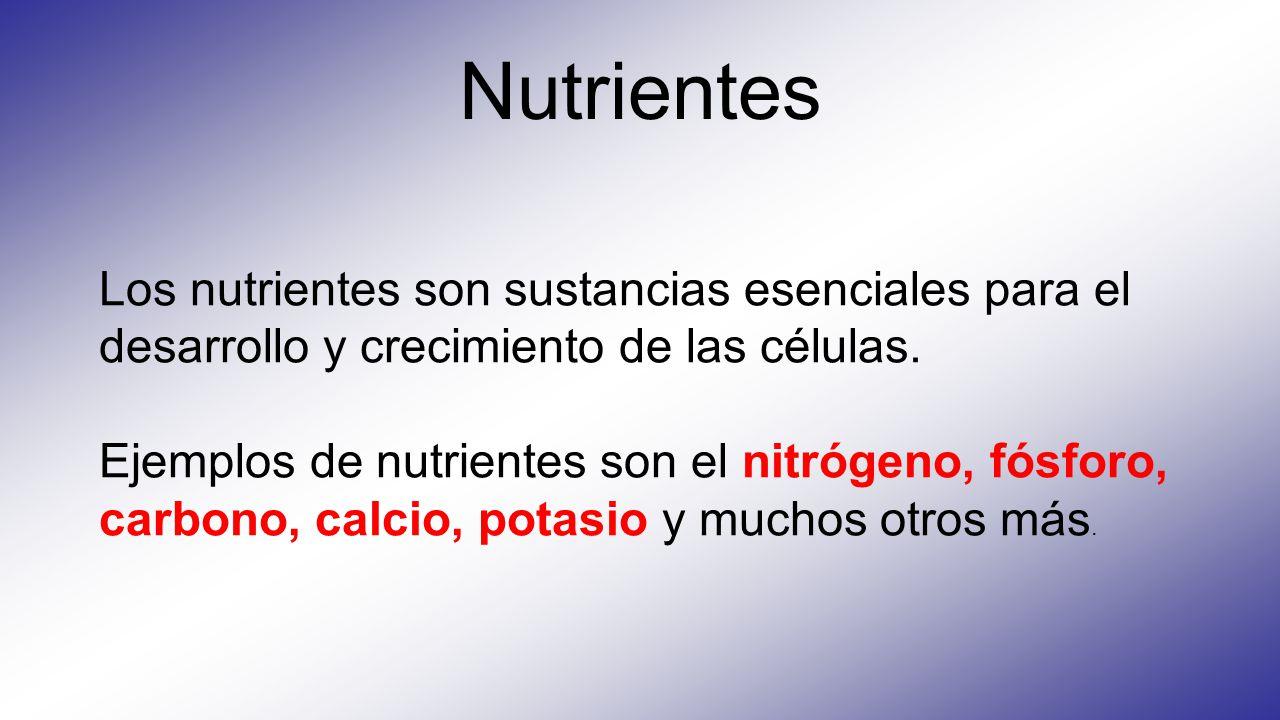 Nutrientes Los nutrientes son sustancias esenciales para el desarrollo y crecimiento de las células. Ejemplos de nutrientes son el nitrógeno, fósforo,