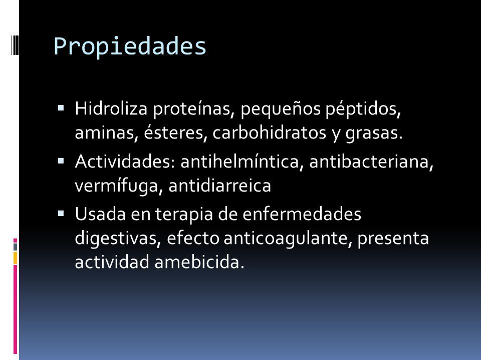 Propiedades Hidroliza proteínas, pequeños péptidos, aminas, ésteres, carbohidratos y grasas. Actividades: antihelmíntica, antibacteriana, vermífuga, a