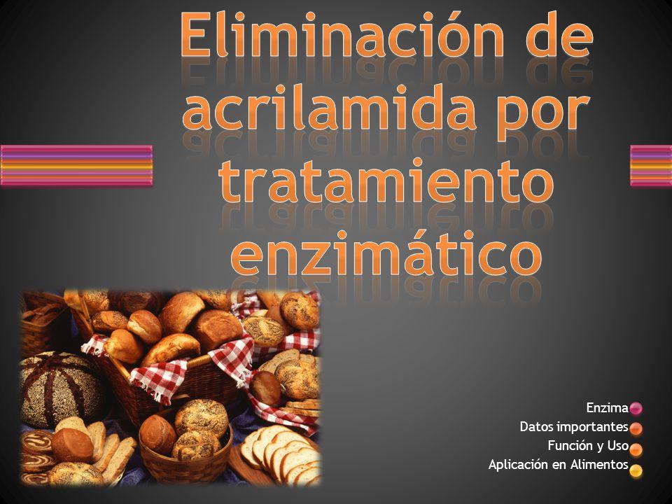 Enzima Datos importantes Función y Uso Aplicación en Alimentos