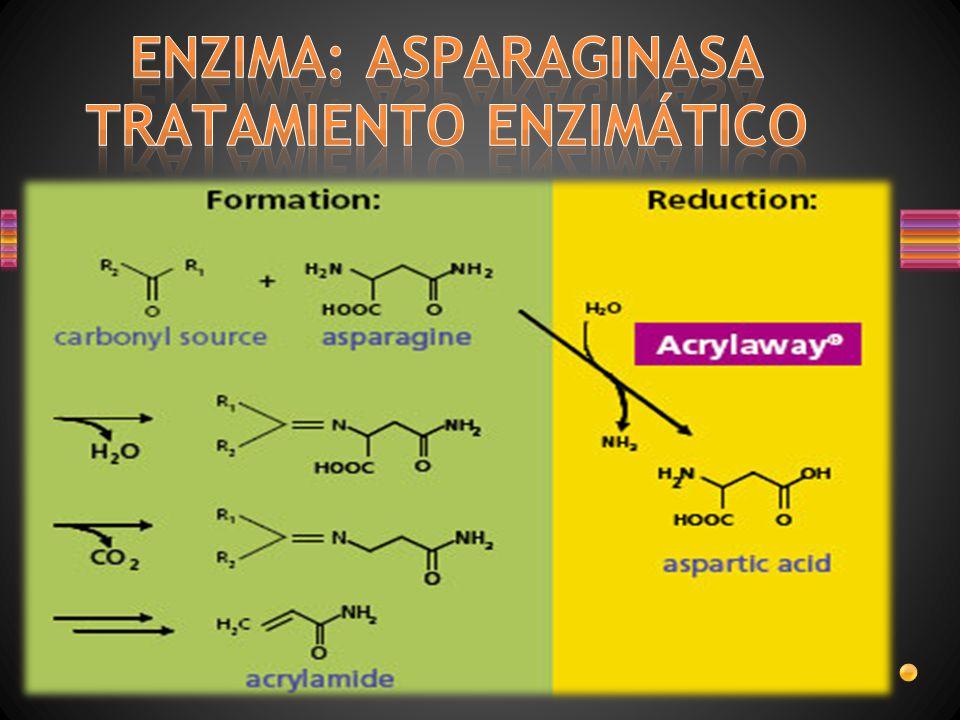 Panna PreventASe, Bicra y Xtru DSM Food Specialties presenta: un completo portafolio de aplicaciones específicas y hecho a medida PreventASe enzima soluciones para la mitigación de la acrilamida.
