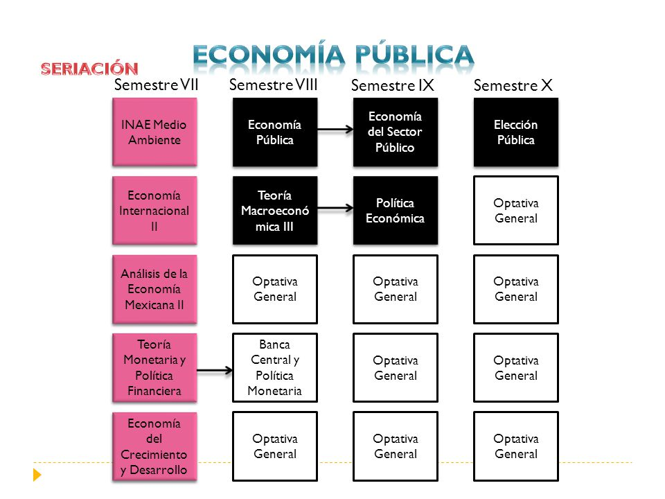 INAE Medio Ambiente Semestre VIII Semestre IXSemestre X Economía Internacional II Análisis de la Economía Mexicana II Teoría Monetaria y Política Fina