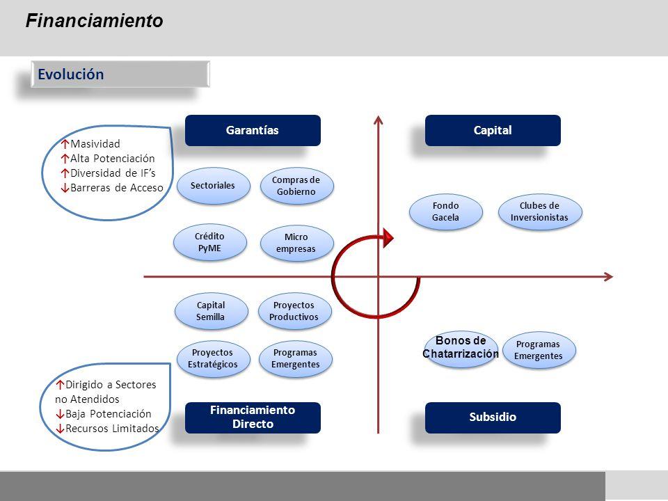 Financiamiento Directo Subsidio Capital Garantías Capital Semilla Proyectos Productivos Proyectos Estratégicos Programas Emergentes Crédito PyME Micro